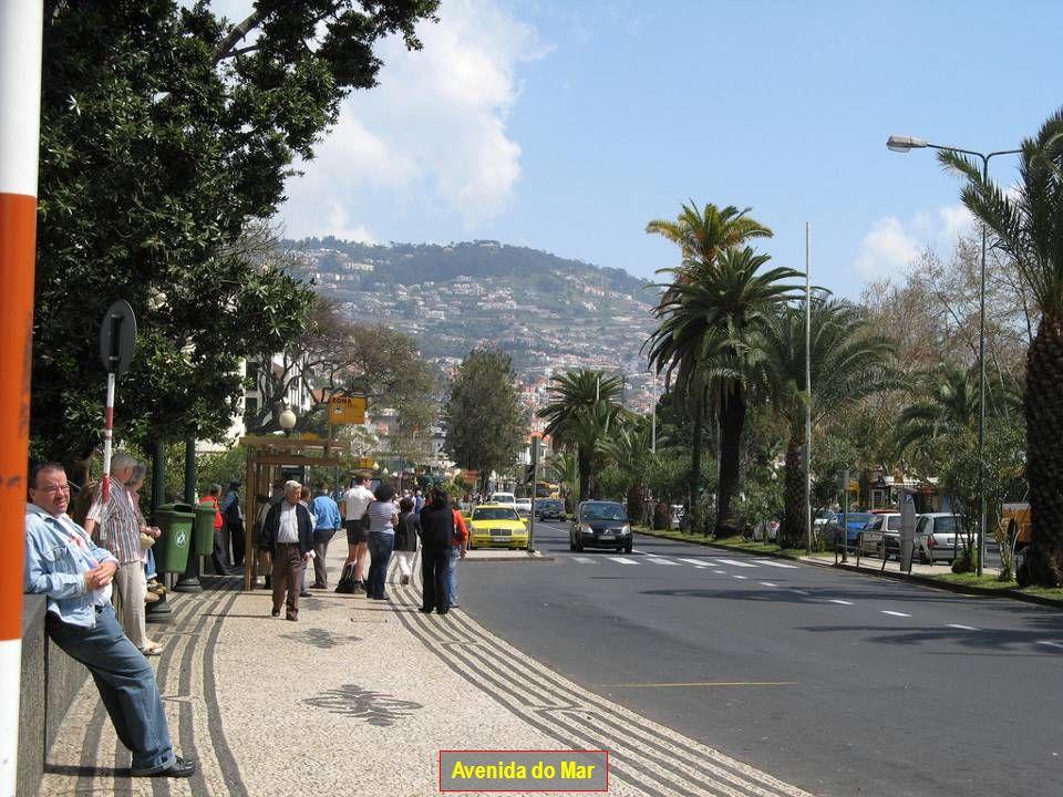 Jardim Monte Palace no Funchal
