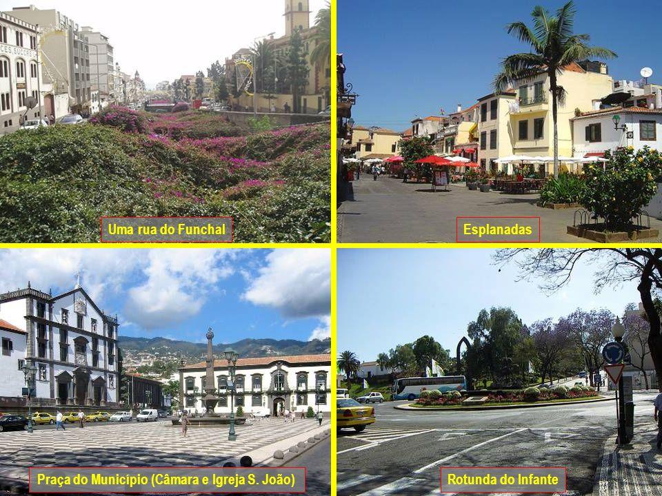 Esplanadas Praça do Município (Câmara e Igreja S. João) Uma rua do Funchal Rotunda do Infante