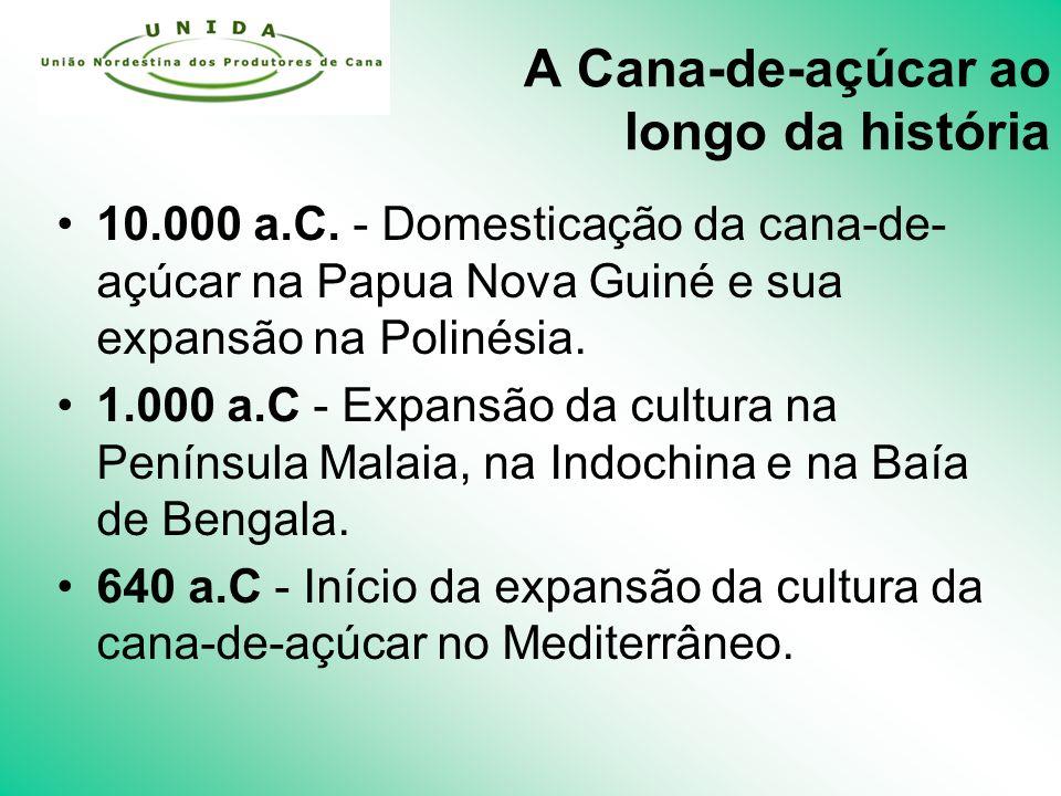 A Cana-de-açúcar ao longo da história 10.000 a.C.