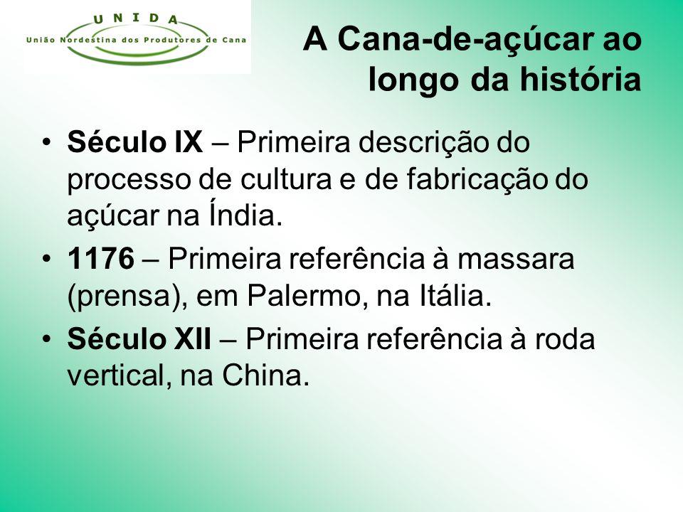A Cana-de-açúcar ao longo da história Século IX – Primeira descrição do processo de cultura e de fabricação do açúcar na Índia.