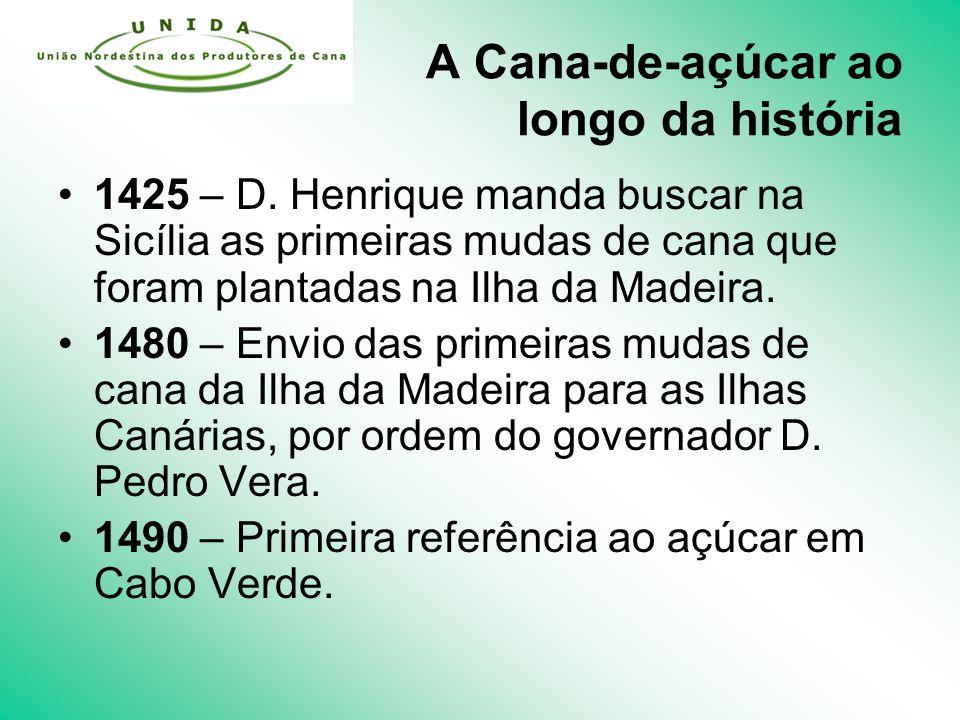 A Cana-de-açúcar ao longo da história 1425 – D.