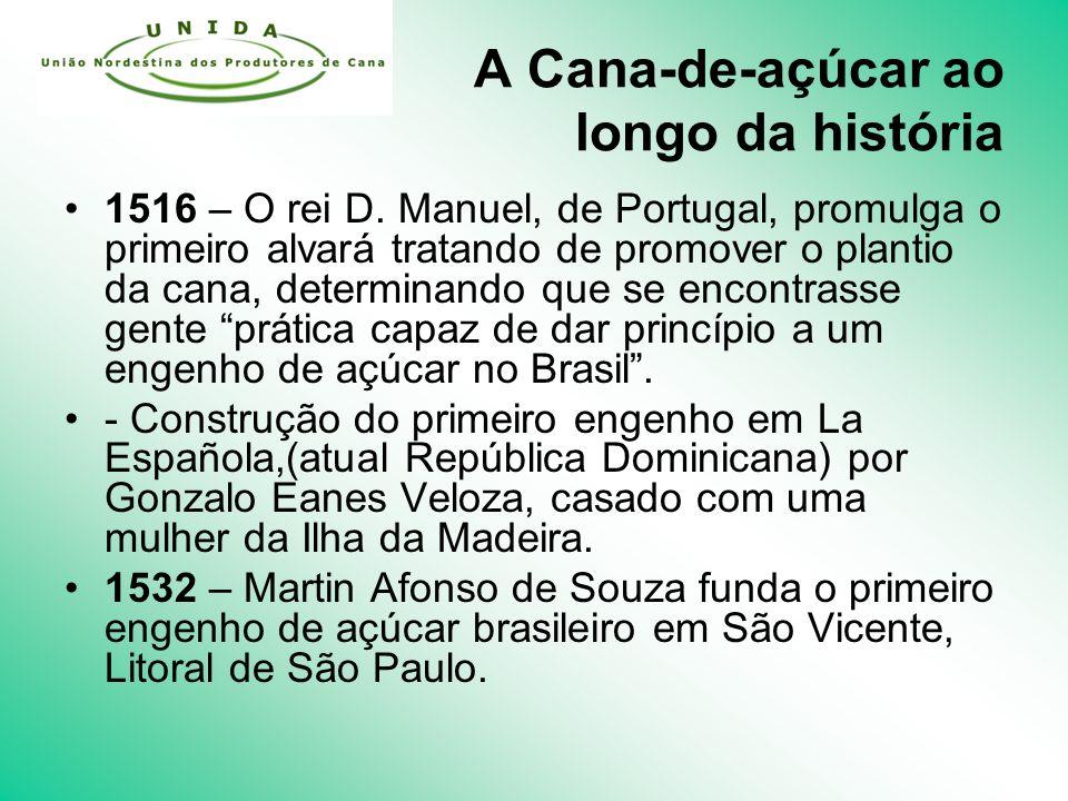 A Cana-de-açúcar ao longo da história 1516 – O rei D.