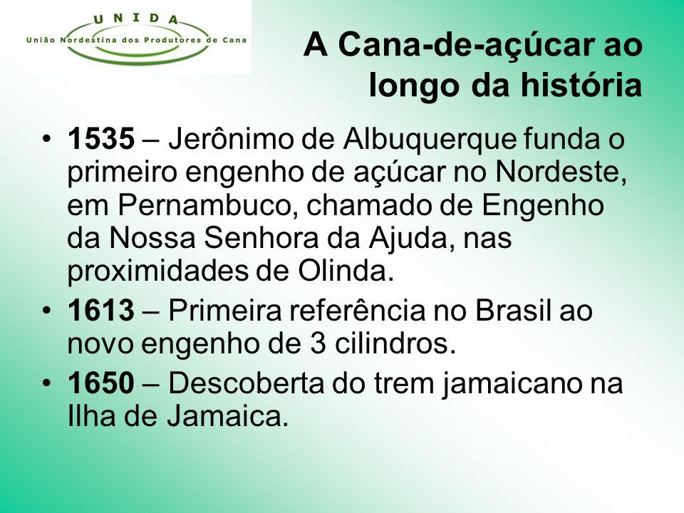 A Cana-de-açúcar ao longo da história 1535 – Jerônimo de Albuquerque funda o primeiro engenho de açúcar no Nordeste, em Pernambuco, chamado de Engenho da Nossa Senhora da Ajuda, nas proximidades de Olinda.