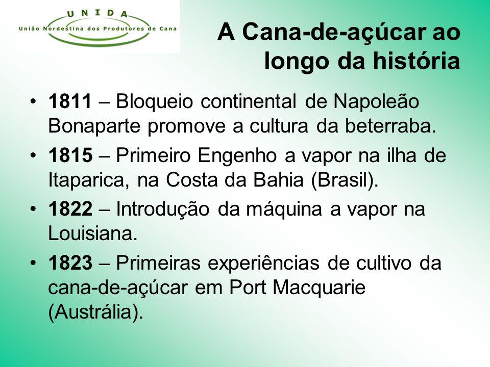 A Cana-de-açúcar ao longo da história 1811 – Bloqueio continental de Napoleão Bonaparte promove a cultura da beterraba.