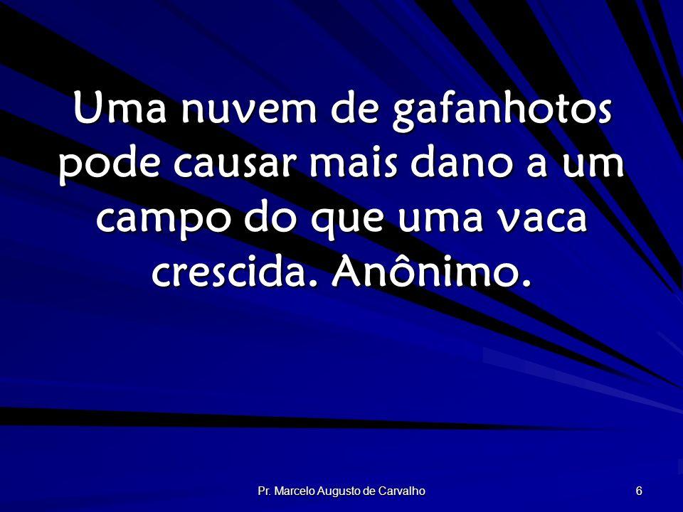 Pr. Marcelo Augusto de Carvalho 6 Uma nuvem de gafanhotos pode causar mais dano a um campo do que uma vaca crescida. Anônimo.