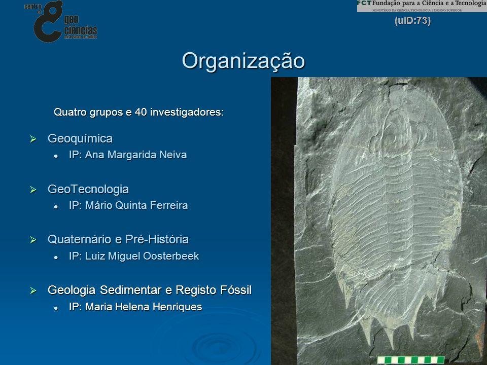 (uID:73) 5 Organização Quatro grupos e 40 investigadores: Geoquímica Geoquímica IP: Ana Margarida Neiva IP: Ana Margarida Neiva GeoTecnologia GeoTecno