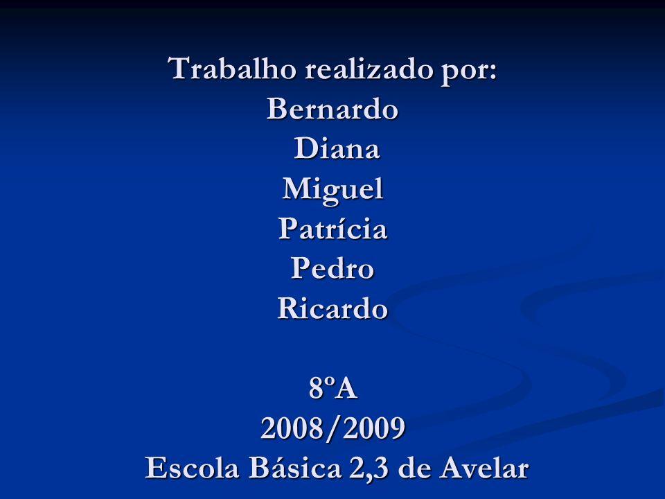 Trabalho realizado por: Bernardo Diana Miguel Patrícia Pedro Ricardo 8ºA 2008/2009 Escola Básica 2,3 de Avelar
