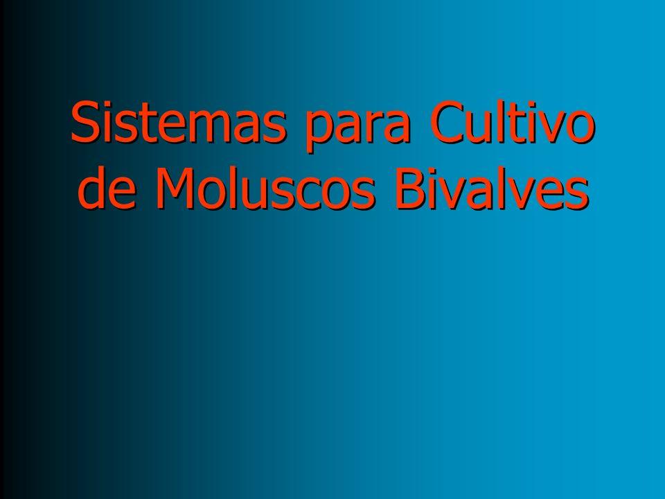 Sistemas para Cultivo de Moluscos Bivalves