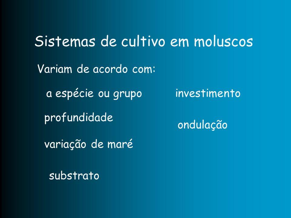Sistemas de cultivo em moluscos Variam de acordo com: profundidade variação de maré substrato a espécie ou grupoinvestimento ondulação