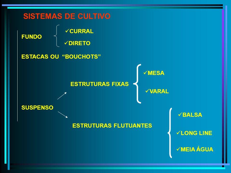 SISTEMAS DE CULTIVO FUNDO ESTACAS OU BOUCHOTS ESTRUTURAS FIXAS SUSPENSO BALSA LONG LINE MEIA ÁGUA MESA VARAL CURRAL ESTRUTURAS FLUTUANTES DIRETO