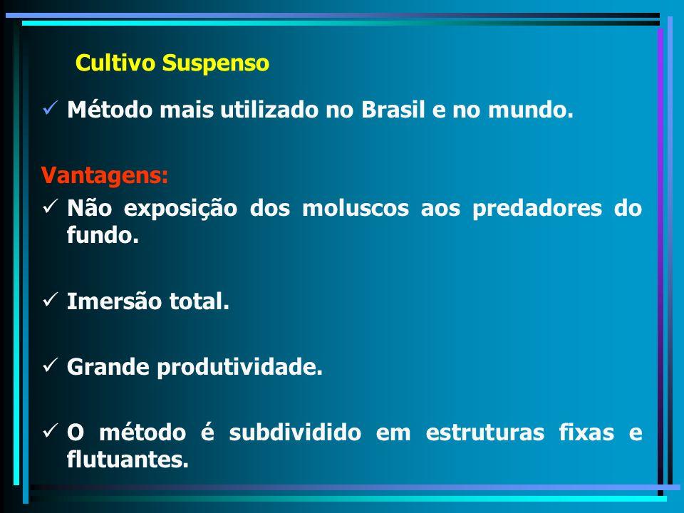 Cultivo Suspenso Método mais utilizado no Brasil e no mundo. Vantagens: Não exposição dos moluscos aos predadores do fundo. Imersão total. Grande prod