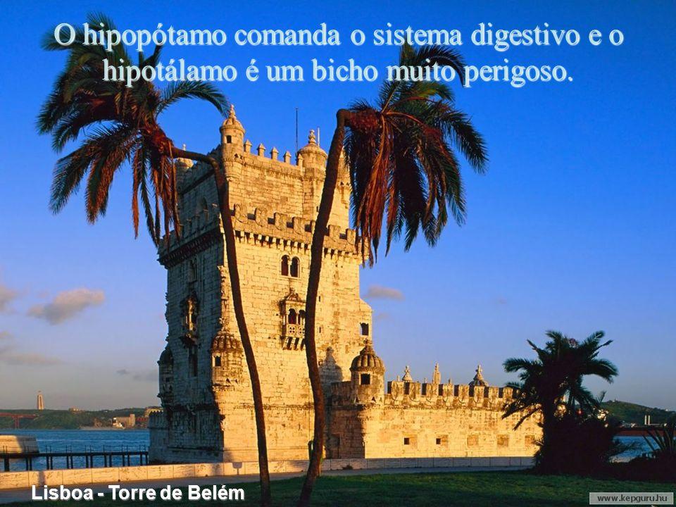 Lisboa - Castelo de S. Jorge Na II Guerra Mundial toda a Europa foi vítima da barbie!