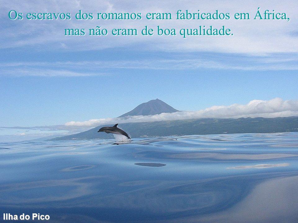 Gaia Os rios podem escolher desembocar no mar ou na montanha.