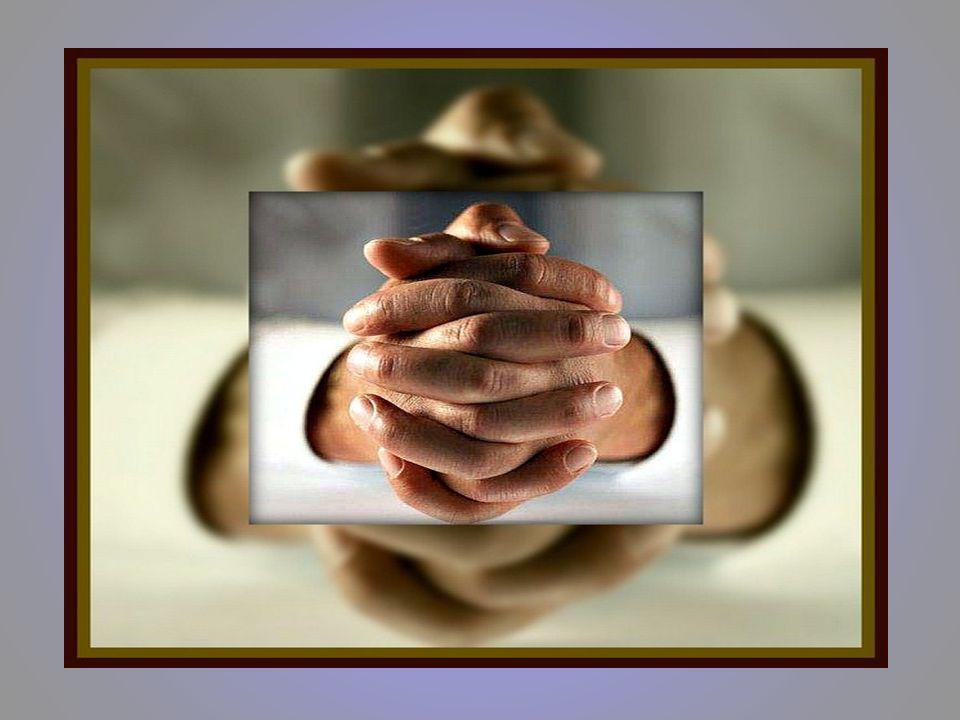 O verdadeiro amigo é aquele que, nos momentos de desalento, aparece para nos encorajar. Quando temos algum problema, o bom amigo ajuda-nos a encontrar