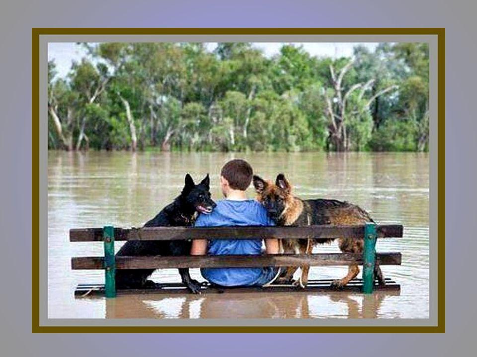 Um amigo está sempre disponível, para nos dar um pouco da sua plenitude para o nosso vazio.