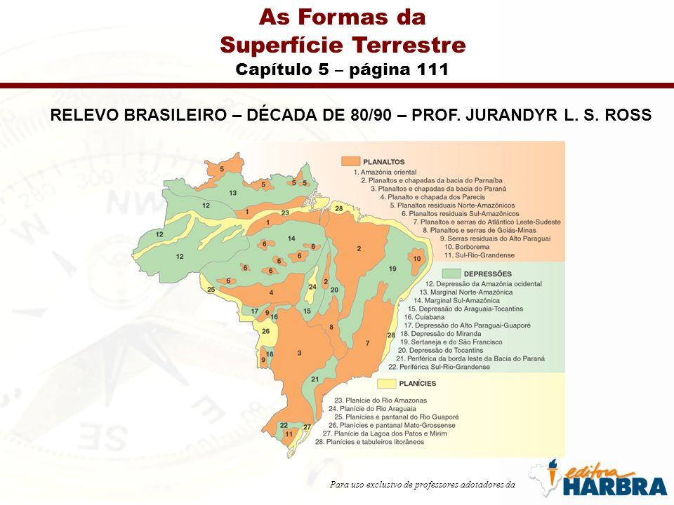 Para uso exclusivo de professores adotadores da As Formas da Superfície Terrestre Capítulo 5 – página 111 RELEVO BRASILEIRO – DÉCADA DE 80/90 – PROF.