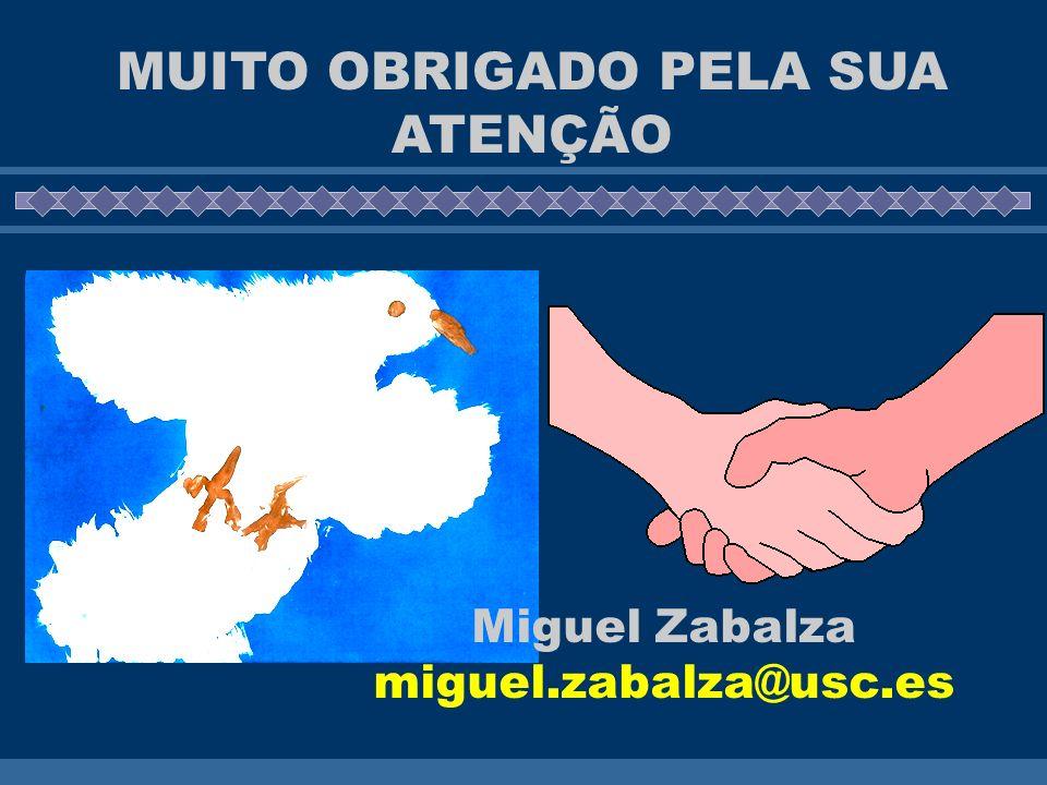 MUITO OBRIGADO PELA SUA ATENÇÃO Miguel Zabalza miguel.zabalza@usc.es