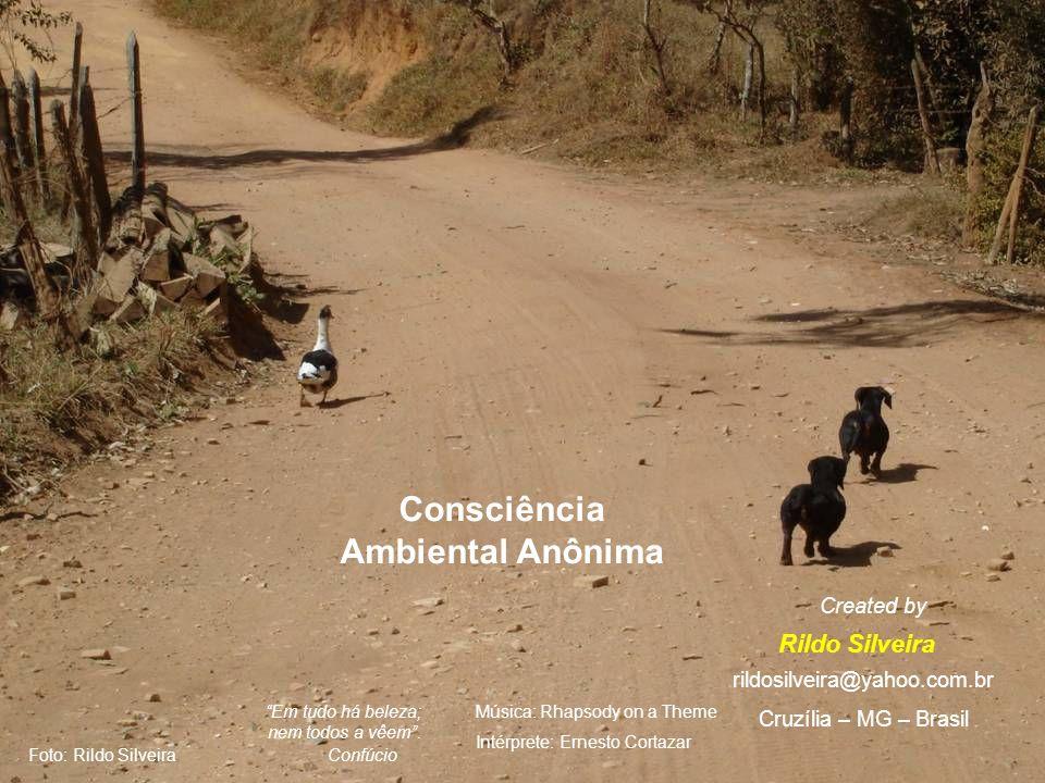 Este, e outros slides, você encontra nos sites www.abcanimal.org.br www.floraisecia.com.br www.petfeliz.com.br http://danielcaixao.multiply.com Artigos em www.petgree.vet.br www.territorioselvagem.org.br www.abcanimal.org.br www.floraisecia.com.br www.petfeliz.com.br www.direitoanimal.org www.jornal3milenio.com.br www.apascs.org.br