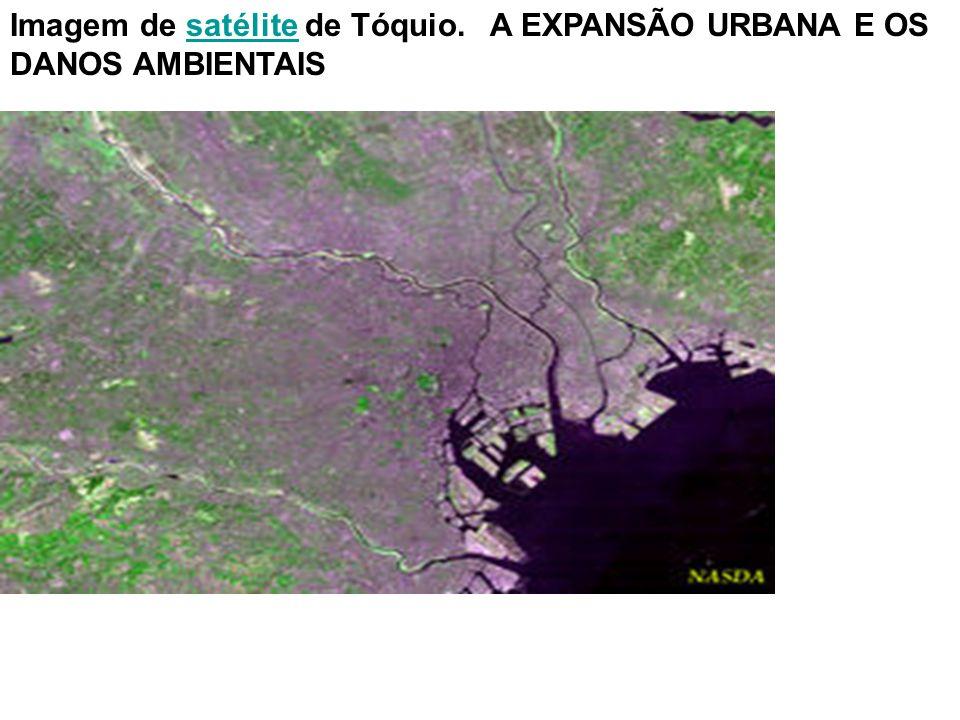 Imagem de satélite de Tóquio.A EXPANSÃO URBANA E OS DANOS AMBIENTAISsatélite
