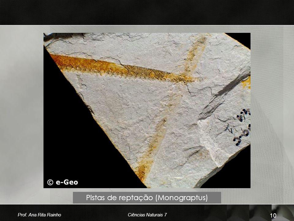 Pistas de reptação (Monograptus) Prof. Ana Rita Rainho 10 Ciências Naturais 7