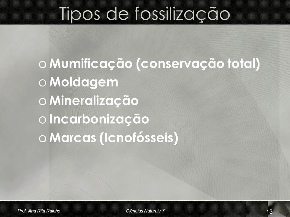 Tipos de fossilização o Mumificação (conservação total) o Moldagem o Mineralização o Incarbonização o Marcas (Icnofósseis) Prof. Ana Rita Rainho 13 Ci