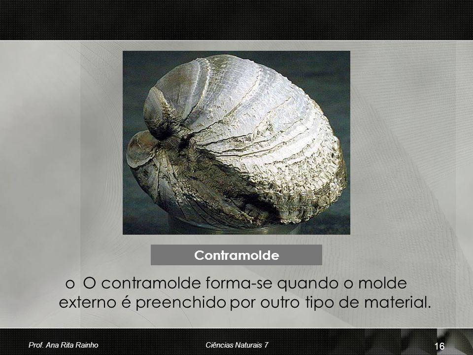 oOoO contramolde forma-se quando o molde externo é preenchido por outro tipo de material. Contramolde Prof. Ana Rita Rainho 16 Ciências Naturais 7