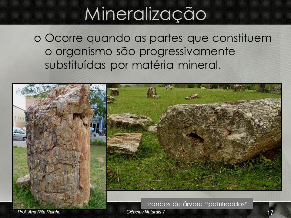 Mineralização oOoOcorre quando as partes que constituem o organismo são progressivamente substituídas por matéria mineral. Troncos de árvore petrifica