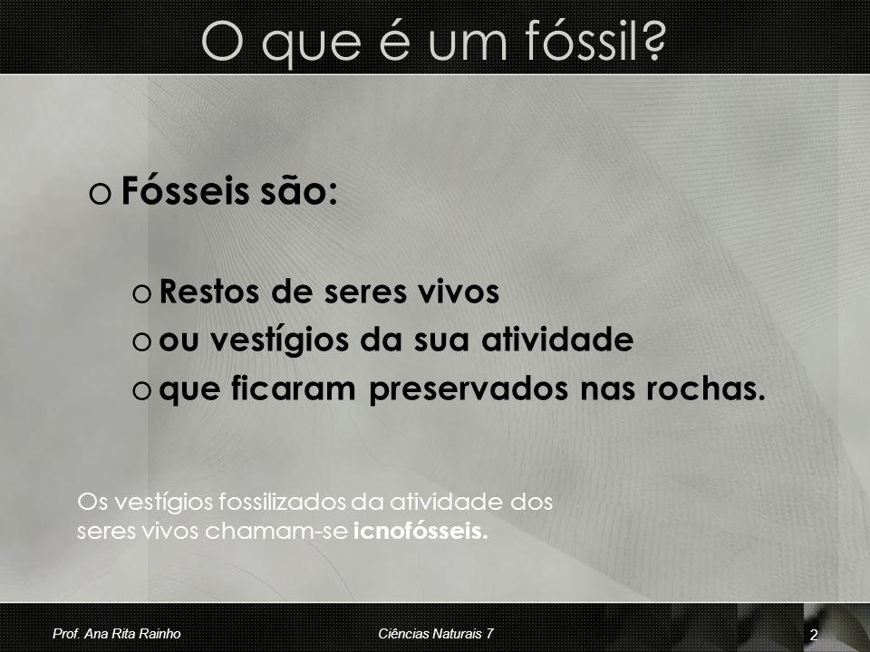 O que é um fóssil? o Fósseis são: o Restos de seres vivos o ou vestígios da sua atividade o que ficaram preservados nas rochas. Os vestígios fossiliza