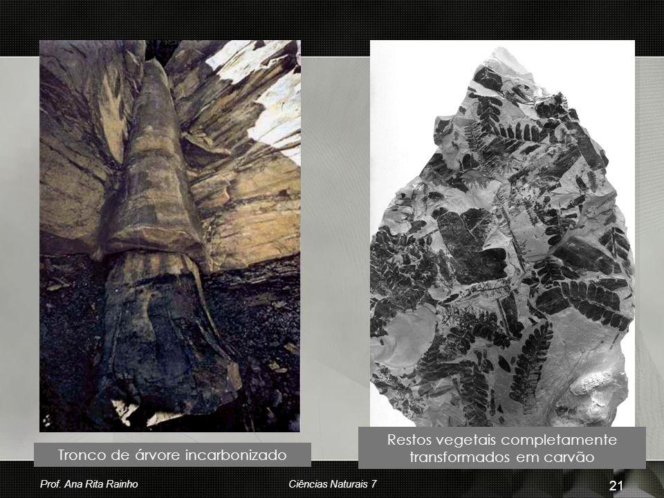 Tronco de árvore incarbonizado Restos vegetais completamente transformados em carvão Prof. Ana Rita Rainho 21 Ciências Naturais 7