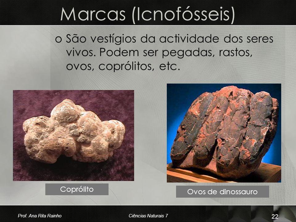 Marcas (Icnofósseis) oSoSão vestígios da actividade dos seres vivos. Podem ser pegadas, rastos, ovos, coprólitos, etc. Coprólito Ovos de dinossauro Pr