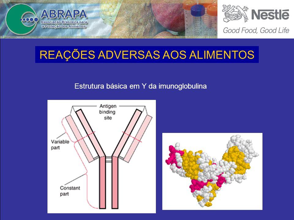Estrutura básica em Y da imunoglobulina REAÇÕES ADVERSAS AOS ALIMENTOS