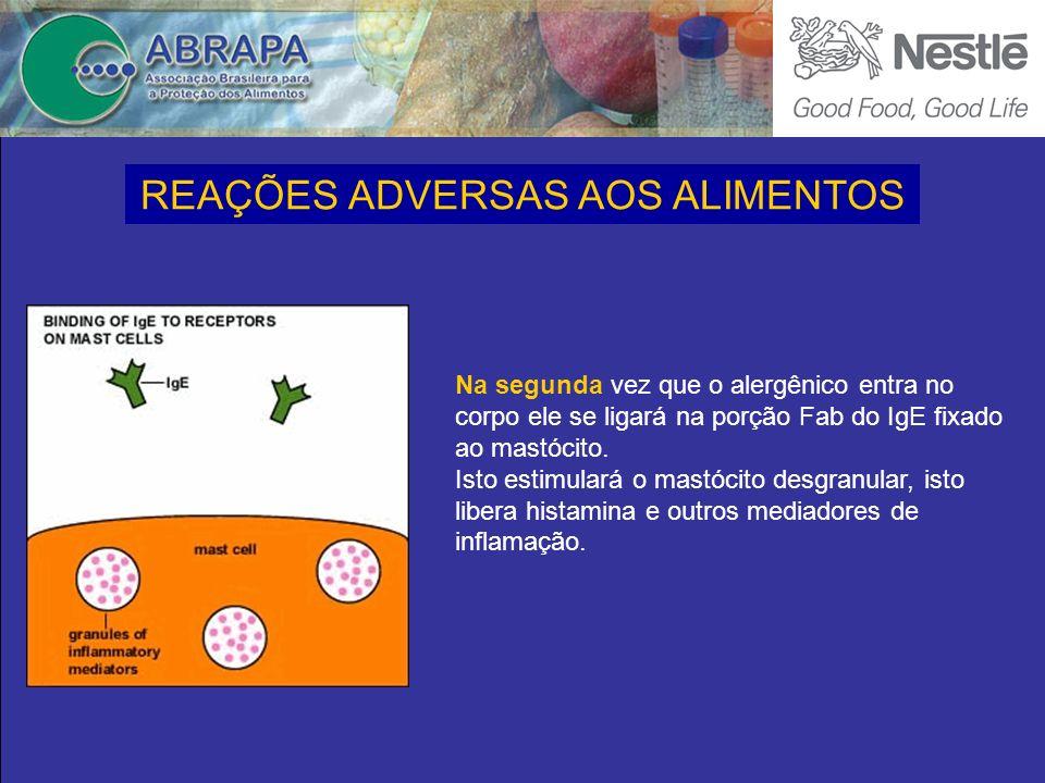 Na segunda vez que o alergênico entra no corpo ele se ligará na porção Fab do IgE fixado ao mastócito.