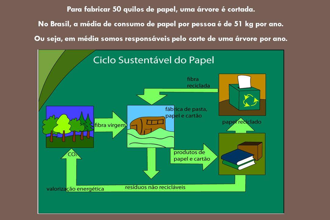 Para fabricar 50 quilos de papel, uma árvore é cortada. No Brasil, a média de consumo de papel por pessoa é de 51 kg por ano. Ou seja, em média somos