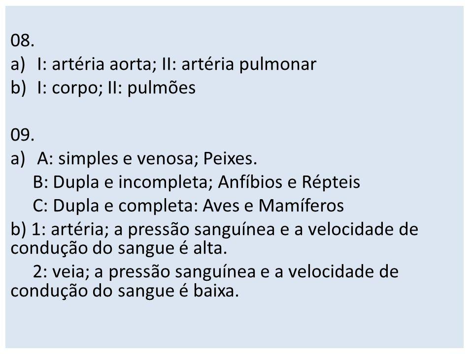 08. a)I: artéria aorta; II: artéria pulmonar b)I: corpo; II: pulmões 09. a)A: simples e venosa; Peixes. B: Dupla e incompleta; Anfíbios e Répteis C: D