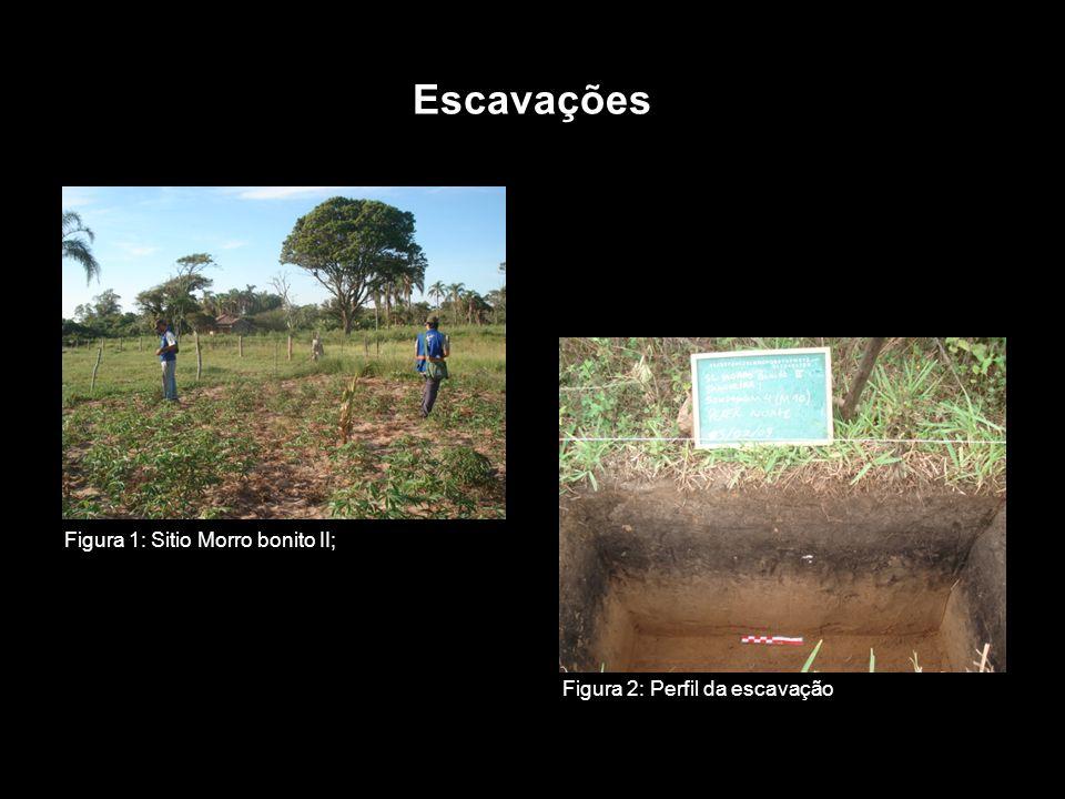 Escavações Figura 1: Sitio Morro bonito II; Figura 2: Perfil da escavação