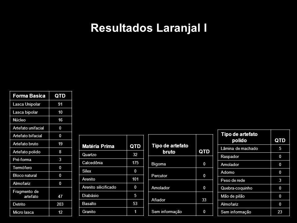 Resultados Laranjal I Forma BasicaQTD Lasca Unipolar91 Lasca bipolar10 Núcleo16 Artefato unifacial0 Artefato bifacial0 Artefato bruto19 Artefato polid