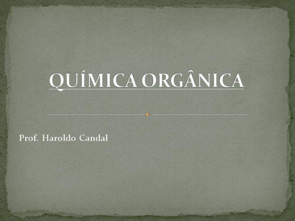 Prof. Haroldo Candal