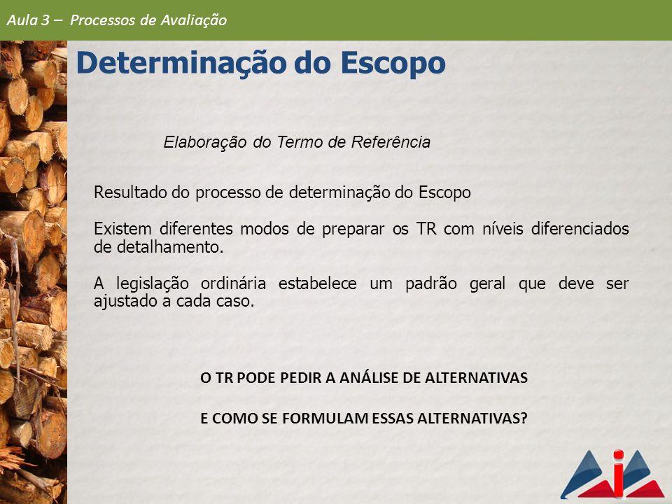 Elaboração do Termo de Referência Resultado do processo de determinação do Escopo Existem diferentes modos de preparar os TR com níveis diferenciados