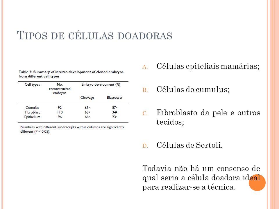 T IPOS DE CÉLULAS DOADORAS A. Células epiteliais mamárias; B. Células do cumulus; C. Fibroblasto da pele e outros tecidos; D. Células de Sertoli. Toda