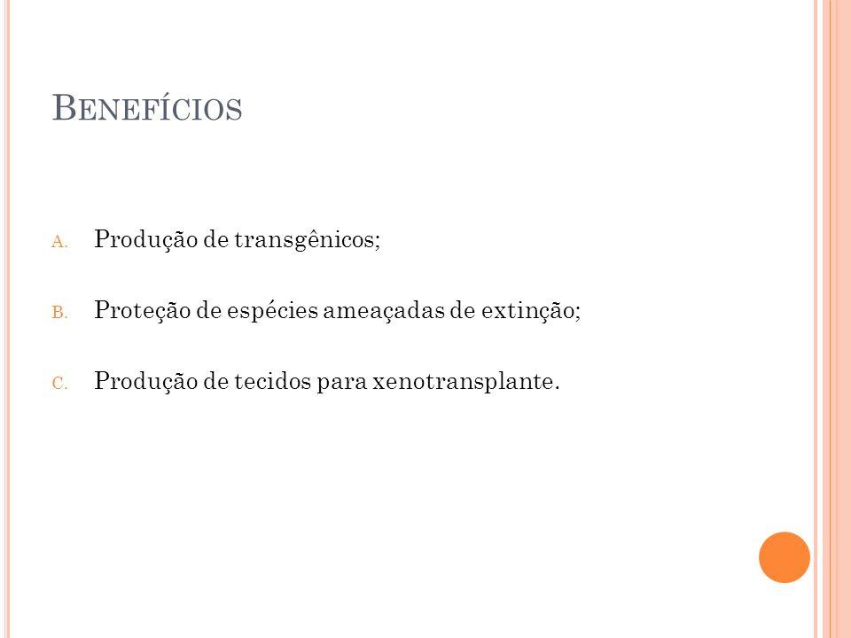B ENEFÍCIOS A. Produção de transgênicos; B. Proteção de espécies ameaçadas de extinção; C. Produção de tecidos para xenotransplante.
