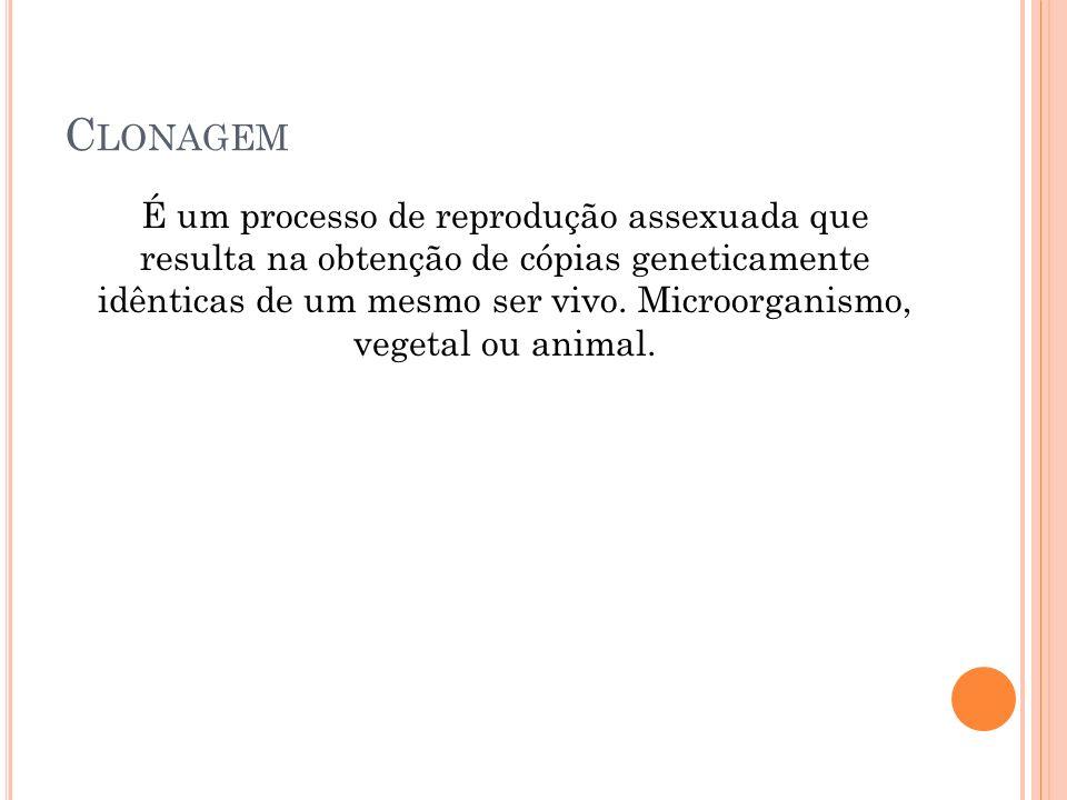 C LONAGEM É um processo de reprodução assexuada que resulta na obtenção de cópias geneticamente idênticas de um mesmo ser vivo.