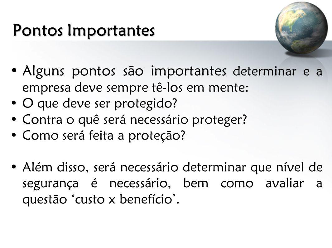 Pontos Importantes Alguns pontos são importantes determinar e a empresa deve sempre tê-los em mente: O que deve ser protegido? Contra o quê será neces