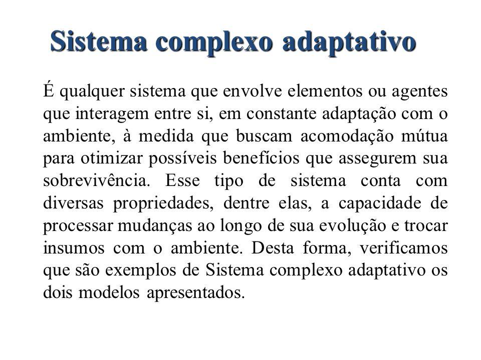 Sistema complexo adaptativo É qualquer sistema que envolve elementos ou agentes que interagem entre si, em constante adaptação com o ambiente, à medid