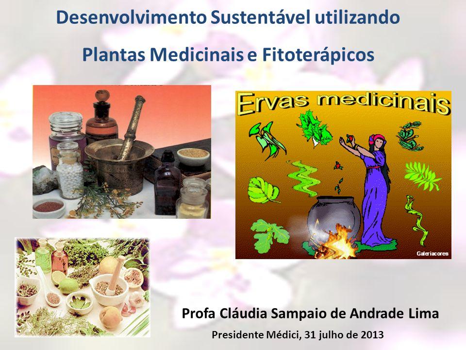 Profa Cláudia Sampaio de Andrade Lima Desenvolvimento Sustentável utilizando Plantas Medicinais e Fitoterápicos Presidente Médici, 31 julho de 2013
