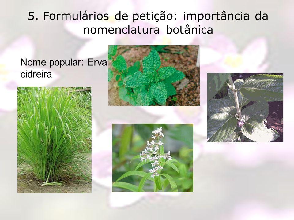 5. Formulários de petição: importância da nomenclatura botânica Nome popular: Erva cidreira