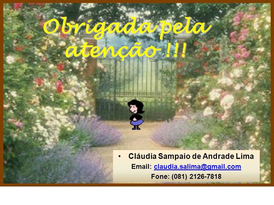 Obrigada pela atenção !!! Cláudia Sampaio de Andrade Lima Email: claudia.salima@gmail.comclaudia.salima@gmail.com Fone: (081) 2126-7818