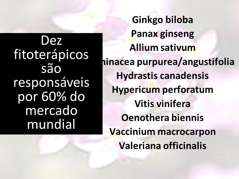 Ginkgo biloba Panax ginseng Allium sativum Echinacea purpurea/angustifolia Hydrastis canadensis Hypericum perforatum Vitis vinifera Oenothera biennis