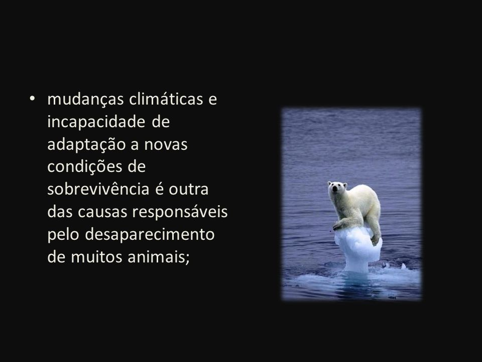 mudanças climáticas e incapacidade de adaptação a novas condições de sobrevivência é outra das causas responsáveis pelo desaparecimento de muitos animais;
