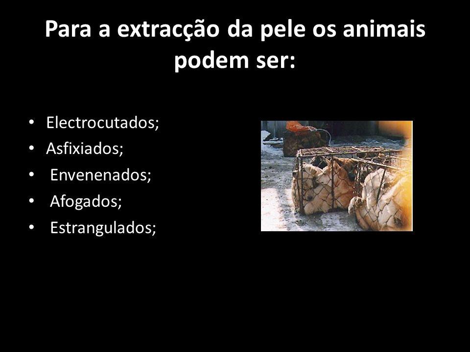 Para a extracção da pele os animais podem ser: Electrocutados; Asfixiados; Envenenados; Afogados; Estrangulados;