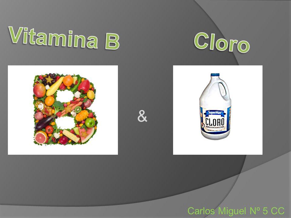 Vitamina B 1 - A tiamina é importante para produção de ácido clorídrico e para a formação do sangue.